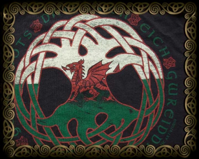 Dragon Roots - Welsh  - Tshirt Styles