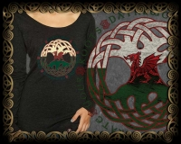 Dragon Roots Triblend LS Tshirt By Jen Delyth